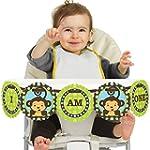 Monkey Boy 1st Birthday I Am One First Birthday High Chair Banner