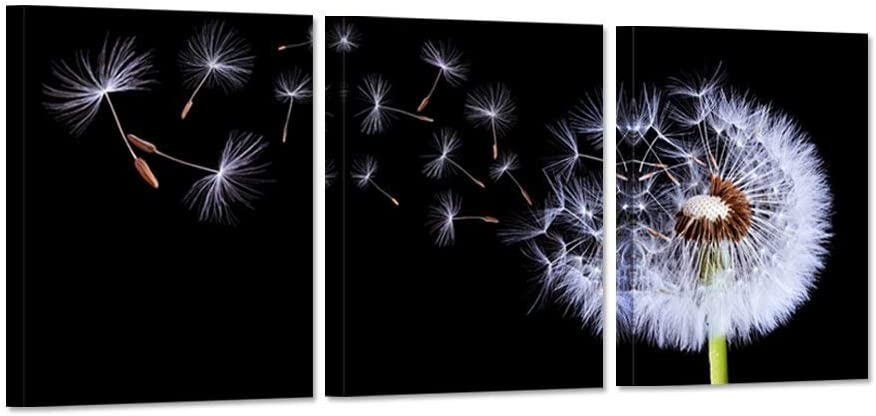 iHAPPYWALL 3 Pieces Dandelion Canvas Wall Art Black and White Fluttering Dandelion Nature Flower Picture Print On Canvas Modern Home Decor Stretched and Framed Ready to Hang 12x16inchx3pcs
