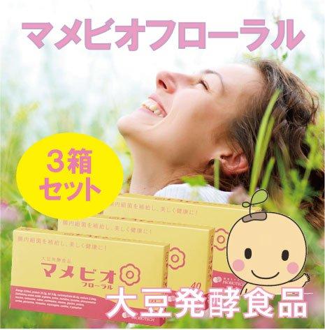 大豆発酵食品マメビオ フローラル 3個セット B00DE9KIHE