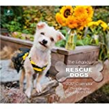 2017 Rescue Dogs Wall Calendar - Legacy {jg} Great Holiday Gift Ideas - for mom, dad, sister, brother, grandparents, gay, lgbtq, grandchildren, grandma.