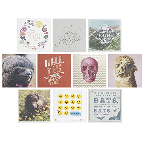 Hallmark Studio Ink Birthday Greeting Cards (10 Cards, 10...