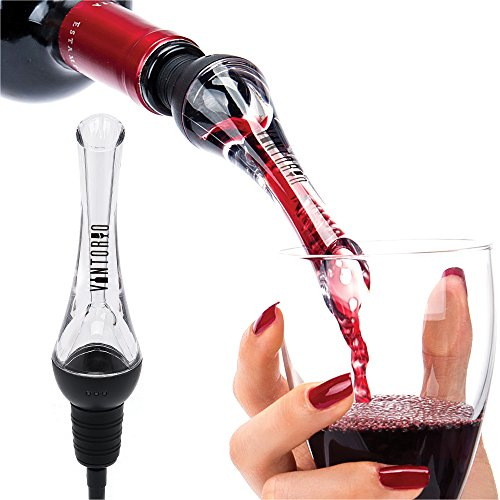Wine Accessories (Vintorio Wine Aerator Pourer - Premium Aerating Pourer and Decanter Spout)