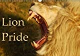 Lion Pride 2018: Captured Moments of Wild Lions in South Africa. (Calvendo Animals)