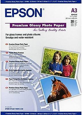 Epson Premium Glossy Photo Paper - Papel fotográfico: Epson ...