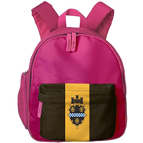 Fengyaojianzhu City Of Pittsburgh Flag Fashion School Book Bag Travel Student Backpack For Toddler Kids Girls - Pa Shopping In Pittsburgh