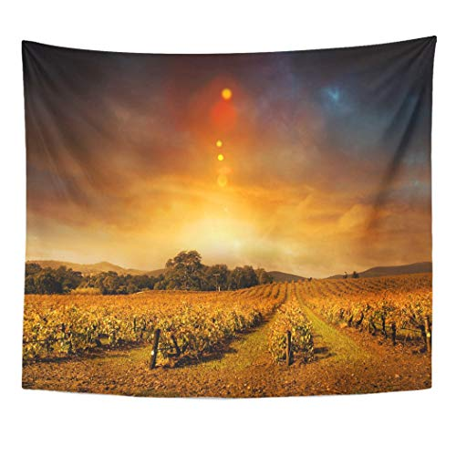 Emvency Wall Tapestry Vineyard Beautiful Sunset Over Barossa Valley in Autumn Wine Landscape Panoramic Winter Farm Moody Sky Decor Wall Hanging Picnic Bedsheet Blanket 60x50 Inches