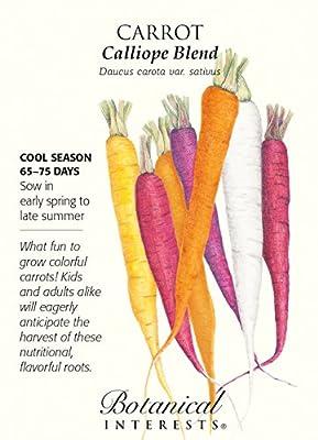 Calliope Blend Carrot Seeds - 1 gram - Botanical Interests