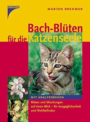 Bachblüten für die Katzenseele