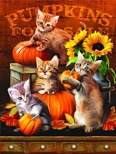 Autumn Kitties 300 pc Jigsaw Puzzle by SunsOut