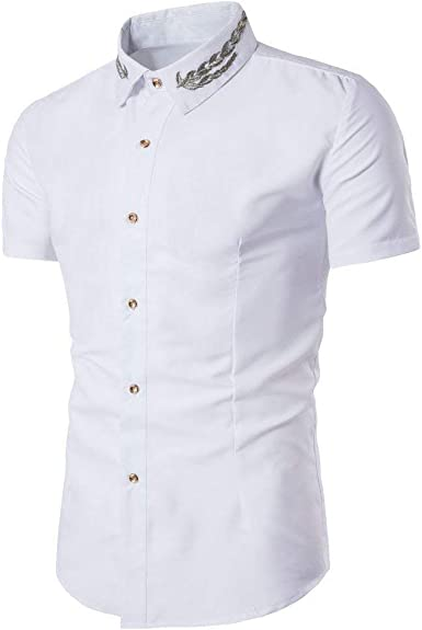 Camisas Hombre Verano Botón Solapa Camisa De Manga Mode De Tops Corta Marca Color Puro Bordado Moda Tops De Polos Tops: Amazon.es: Ropa y accesorios