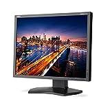 NEC P212-BK MultiSync 21.3'' Screen LED-Lit Monitor