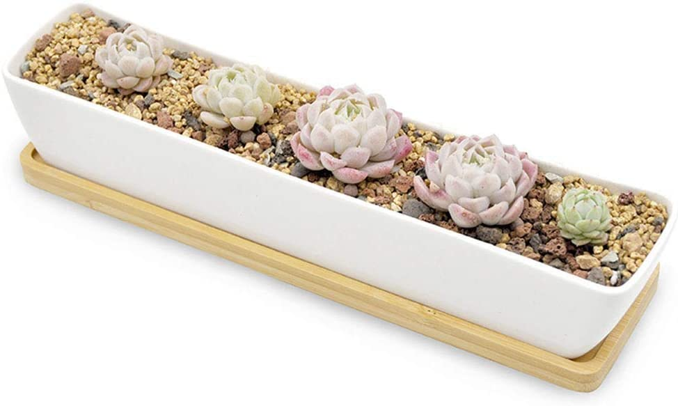 Boloniprod Plant Window Boxes 11.1 inch Long Rectangle White Ceramic Succulent Planter Pots/Mini Flower Plant Containers with Bamboo Saucers Plant Window Boxes
