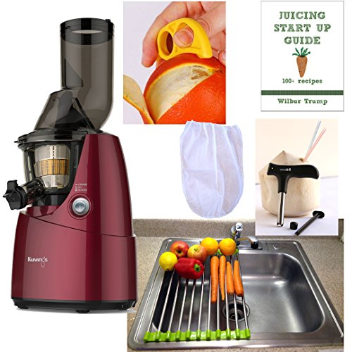 kuvings whole slow juicer b6000s - 3