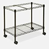 Handicap Step Stool With Handle Bathroom Metal Stepping Kitchen Wide Long Large & eBook by MSS