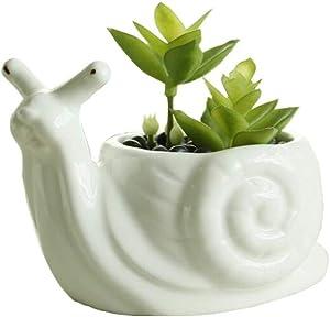 Youfui Cute Succulent Planter Animal Shaped Flower Pot Decor for Home Office Desk (Snail)