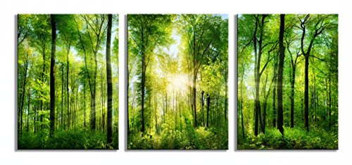 Forest Art Canvas - Youk-art Decor 3 Panels Morning Sunrise Green Trees Landscape Sunshine Over Forest Photograph Printed on Canvas for Home Wall Decoration
