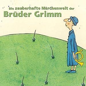 Die zauberhafte Märchenwelt der Brüder Grimm 14 Hörbuch