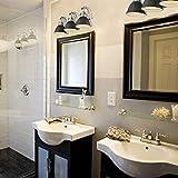 Emliviar 3-Light Bathroom Vanity Light