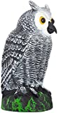 Scarecrow Fake Owl Decoy - Pest Repellent Garden Protector - (small)