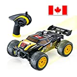GPTOYS RC Car Off Road High Speed RC Trucks 1/24 Scale Vehicles 4 WD,Remote Control Car with Canada Flag Sticker,R/C Hobby Car for Kids and Adults (S607)