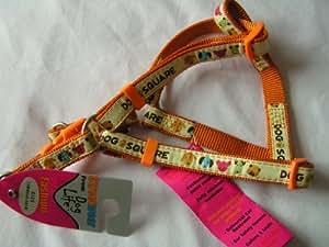 adjustable fashion dog harness(40-50cm)