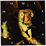 3dRose dpp_73160_1 Parsons Chameleon Lizard, Ranomafana NP, Madagascar-Af24 Pox0406 Pete Oxford Wall Clock, 10 by 10-Inch