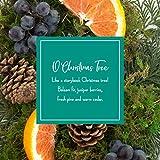 Scentsicles Christmas Flameless Fragrance, Natural