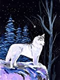 Cheap Caroline's Treasures SS8400CHF Starry Night Siberian Husky Flag Canvas, Large, Multicolor