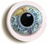 Human Eyeball Funny Button Pin (Size 1inch Diameter)