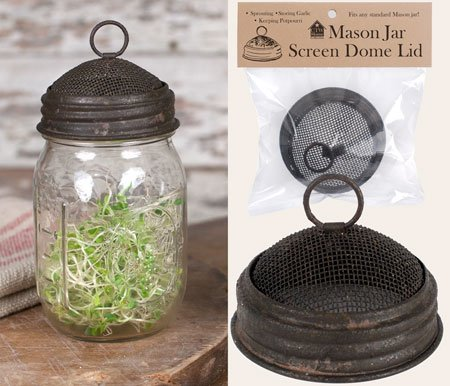 Mason Jar Screen Dome Lid (Jar Dome Lids Canning)