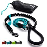 Heavy Duty Rope Leash for Large and Medium Dogs with Anti-Pull Bungee for Shock Absorption - No Slip Reflective Leash for Outside – Suitable for Dog Training and Walking (Teal)