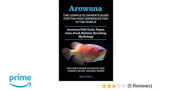 Arowana The Complete Owner S Guide For The Most Expensive Fish In