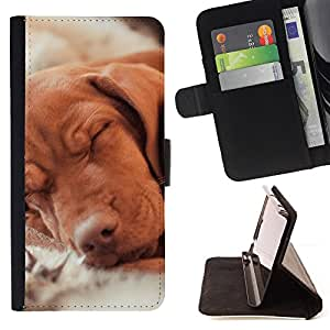 For Samsung Galaxy S6 Vizsla Golden Retriever Hund Dog Canine Style PU Leather Case Wallet Flip Stand Flap Closure Cover