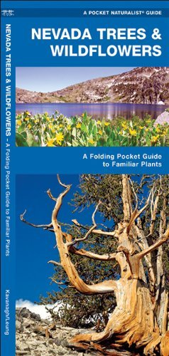 Nevada Trees & Wildflowers: A Folding Pocket Guide to Familiar Species (Pocket Naturalist Guide Series) by James Kavanagh - Mall Waterford The
