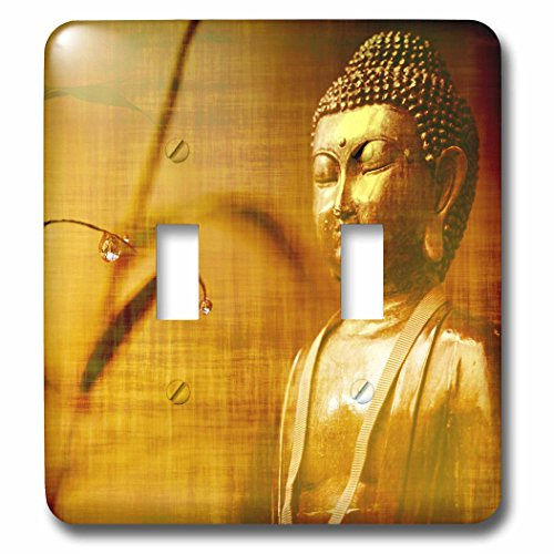 3dRose Sven Herkenrath Buddha - Golden Buddha with Asia Bamboo Zen Yoga Faith Religion - Light Switch Covers - double toggle switch (lsp_266209_2) by 3dRose