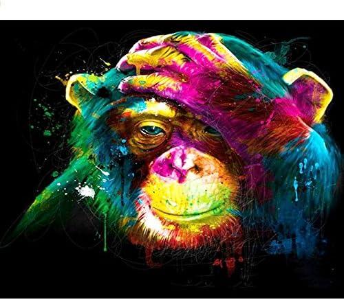Mono pintado 936 Pintar por n/úmeros para ni/ños adultos kit de pintura al /óleo DIY Principiante