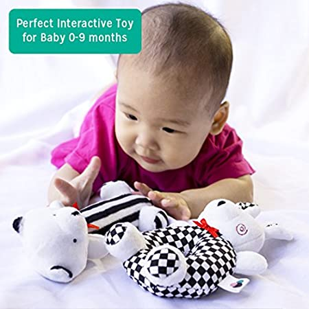 Newborn Gift 6 2- Piece Baby Plush Sensory Rattle Set Glossydots Baby Baby Gifts and Toys Educational Toy for Boys and Girls