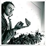 Vintage photo of Butterflies:artist creating a flutter, damien hist with lepidopterous star.