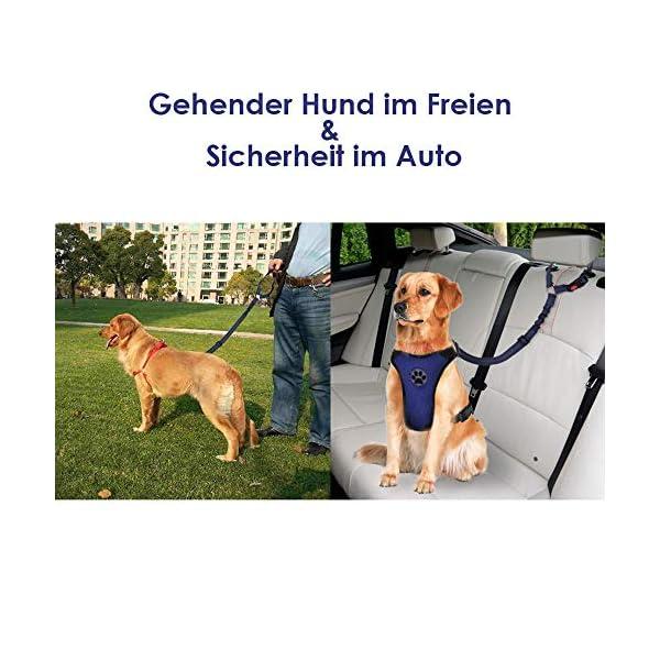51o7Hg4pSHL SlowTon Hundesitzgurt, 2 Packungen Haustier Hund Katze Auto Sicherheitsgurt für alle alltäglichen und sportlichen…