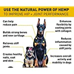 Cat Health Products (2 Pack) Hemp Oil for Dogs Cats Pets, Organic Calming Dog... [tag]
