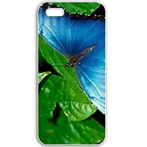 Apple iPhone 5 5S Cases Customized Gifts For Animals blue morpho Animals Birds Black