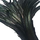 Shekyeon 12-14inch Rooster Tail Feather Used Hats Costume Decoration Pack of 50(Black)
