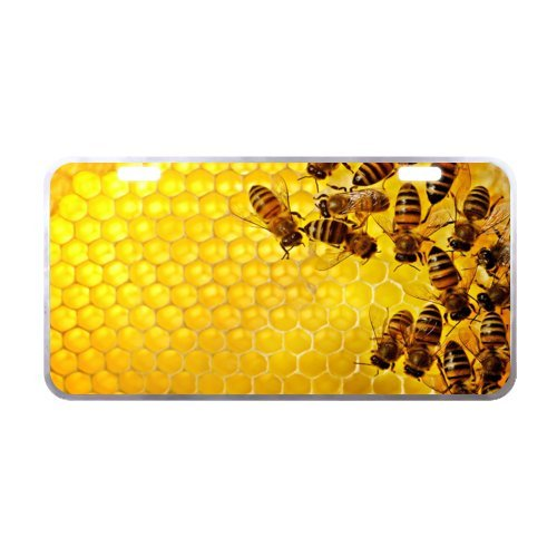 bee License Plate with Lightweight-11.8