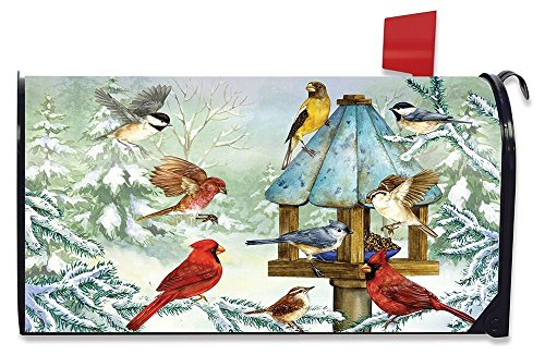 (Briarwood Lane Cold Feet, Warm Hearts Winter Large Mailbox Cover Birds Oversized)