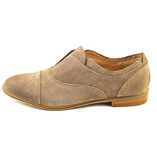 Steve Madden Catt Piel Zapato