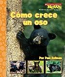 img - for Como Crece Un Oso = A Bear Cub Grows Up (Scholastic News Nonfiction Readers en Espanol) (Spanish Edition) book / textbook / text book