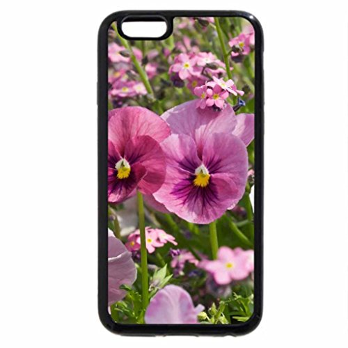 iPhone 6S / iPhone 6 Case (Black) Lovely Pansies