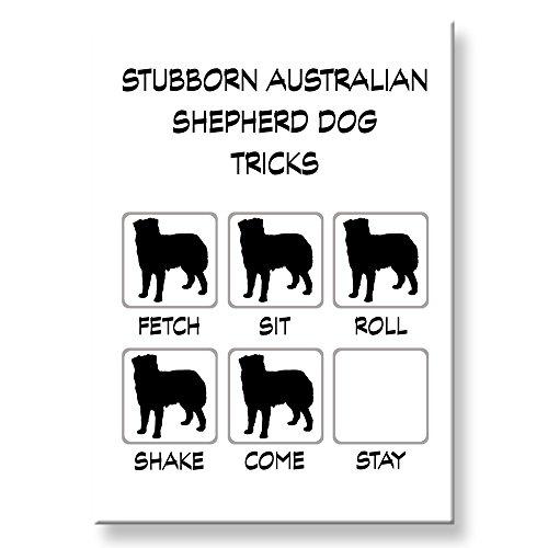 Australian Shepherd Dog Stubborn Tricks Fridge Magnet - Australian Gift Store