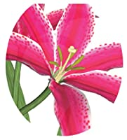 Toilet Tattoos TT-1104-R Stargazer Lily Decorative Applique For Toilet Lid, Round