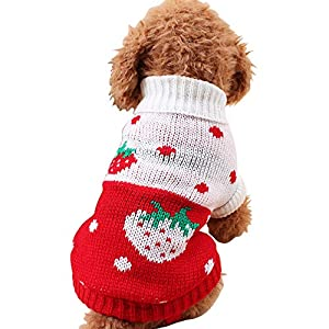 CHBORCHICEN Pet Dog Sweaters Classic Knitwear Turtleneck Winter Warm Puppy Clothing Cute Strawberry and Heart Doggie Sweater 7